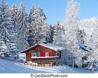 maison, vacances, hiver