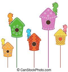 maisons, oiseaux, chant, amuser, leur