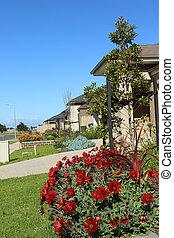 maisons, suburbain, moderne, voisinage