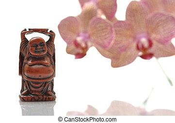 maitreya, budda, orchidea