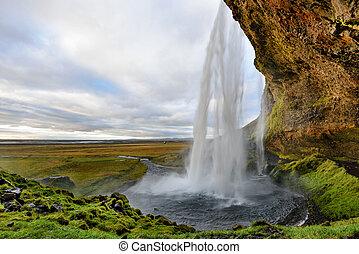 majestätisch, seljalandsfoss, der, meisten, berühmt, wasserfall, in, iceland.