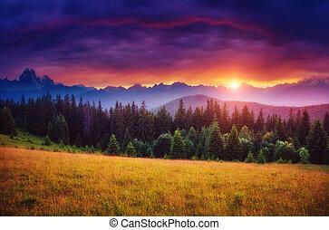 majestatyczny, zachód słońca, barwny