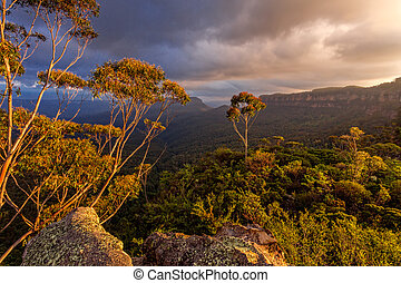 Majestic afternoon light in the Blue Mountains