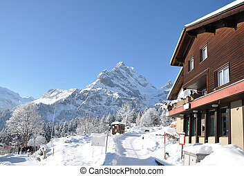 Majestic Alpine view. Switzerland