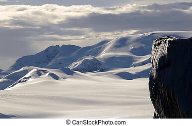 Majestic Antarctica