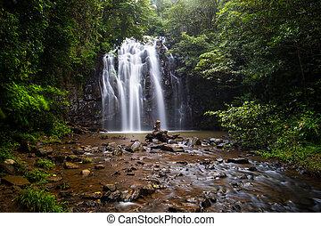 Majestic Ellinjaa Falls
