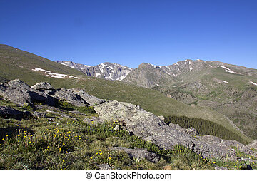 Majestic High Country Landscape - a scenic high mountain ...