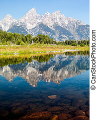 The Cathedral Group of the Teton Mountain Range is reflected on the waters of the Snake River at Schwabacher's Landing in Grand Teton National Park, Wyoming, USA.