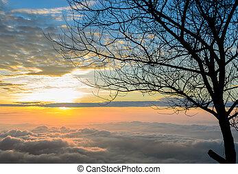 Majestic sunrise with sea of fog