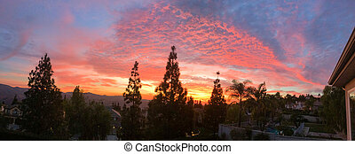 majestic sunset sunrise over trees
