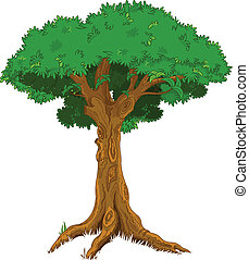 Illustration of majestic tree