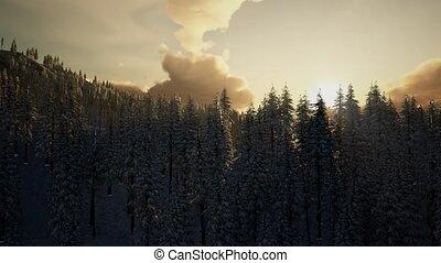 Majestic Winter Landscape Glowing by Sunlight - majestic ...