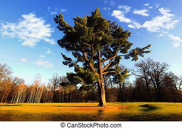 majestueux, arbre, chêne