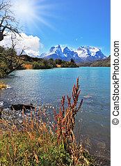 majestuoso, parque nacional, torres del paine, chile.