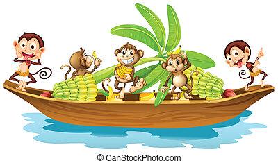 majom, csónakázik
