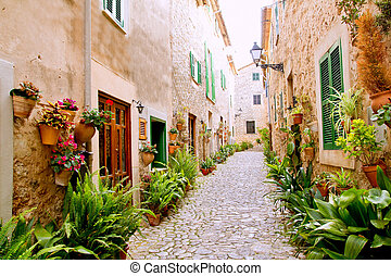 Majorca Valldemossa typical with flower pots in facade -...