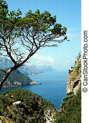 Majorcan bay view