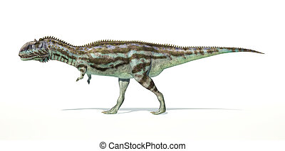 Majungasaurus dinosaur, full body photorealistic representation, scientifically correct. Side view, On white background and drop shadow. Clipping path included.