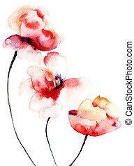 mak, kwiaty