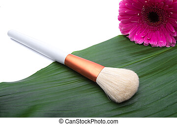 Makeup Brush on green leaf with daisy