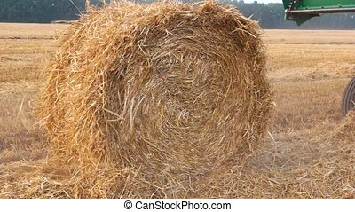 Making haystack straw bale. Moving haystack wheel.