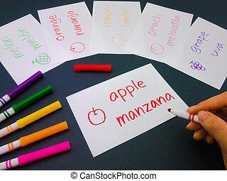 Making Language Flash Cards; Spanish