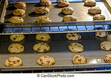 Making of Chocolate Chip Cookies