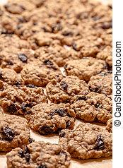 Making of Oatmeal Raisin Cookies - Rows of oatmeal raisin...