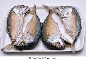makreel, in, thailand, vers seafood, partij, van, voeding, bestanddeel, gereed, om te, cook.