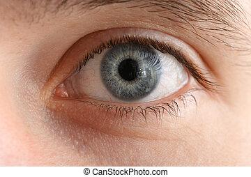 makro, közelkép, szem, emberi