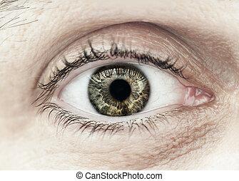makro, samiec, closeup, oko