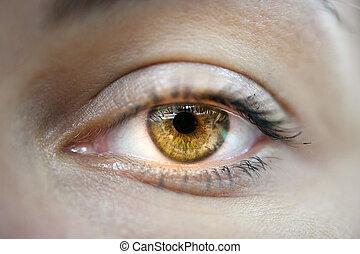 makro, szem, sárga, női
