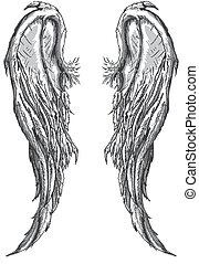 mal, asas anjo