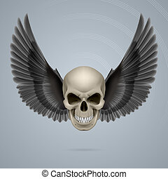 mal, crâne, ailes