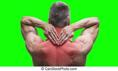 mal reins, douleur, cou, chroma, musculaire, fond, vert, personnes agées, clã©, homme