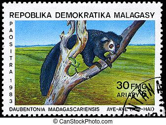 MALAGASY - CIRCA 1983 Aye-aye