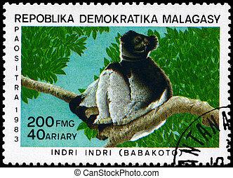 MALAGASY - CIRCA 1983 Indri