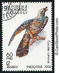 MALAGASY CIRCA 1991: stamp printed by Malagasy, shows Bird, Cuckoo, circa 1991