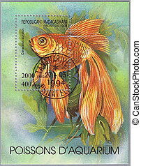 Carassius auratus - MALAGASY REPUBLIC - CIRCA 1994: A stamp ...
