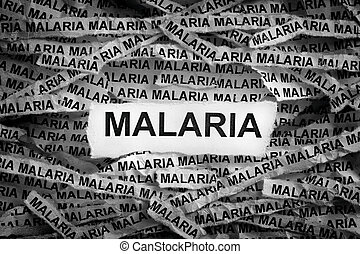 Torn pieces of paper with the word Malaria