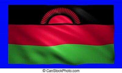 Malawi flag on green screen for chroma key