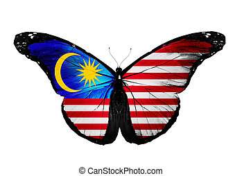 Malaysian flag butterfly, isolated on white background