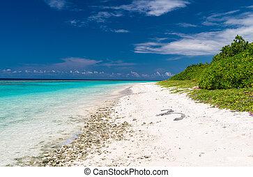 maldivas, atolón, ukulhas, asombroso, ari, playa