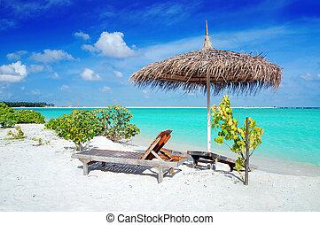maldivas, playa