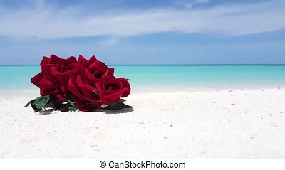 Maldives beautiful beach background white sandy tropical paradise island with blue sky sea water ocean 4k red roses