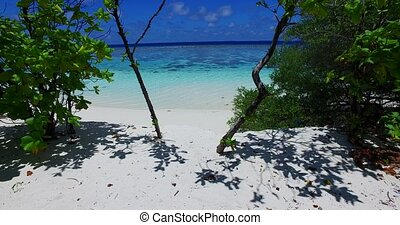 Maldives beautiful white sandy beach background on sunny...