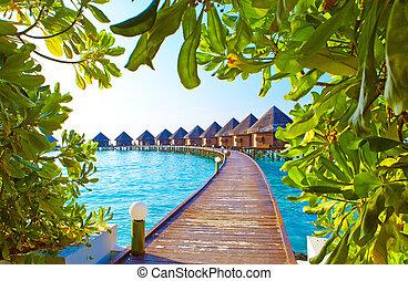 maldives., kupy, willa, woda