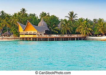 maldives., ocean, wyspa