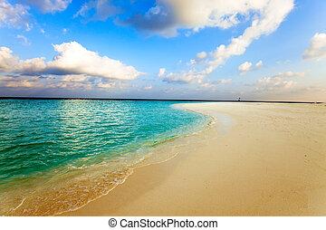 maldives., um, praia arenosa, e, um, oceânicos, coast.
