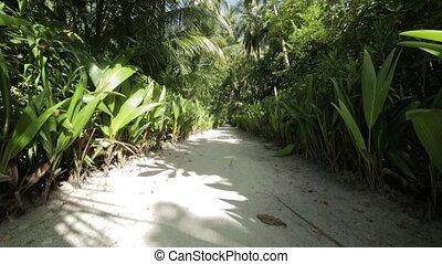 Maldives, walkway inside the island, lot of plats